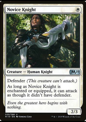 Novice Knight (Ritternovize)