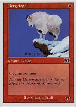Bergziege (Mountain Goat)