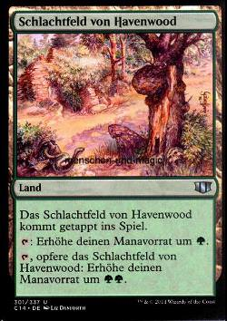 Schlachtfeld von Havenwood (Havenwood Battleground)