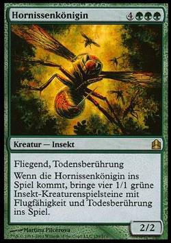 Hornissenk  246 nigin  Hornet Queen Queen Hornet Insect