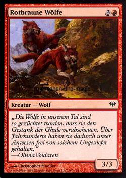 Rotbraune Wölfe (Russet Wolves)