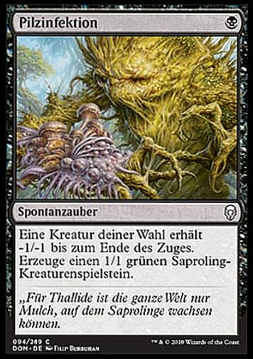 Pilzinfektion (Fungal Infection)