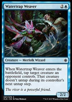 Watertrap Weaver (Wasserfallenweberin)