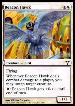 Beacon Hawk (Signalfalke)