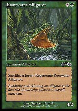 Rootwater Alligator (Wurzelwasser-Alligator)