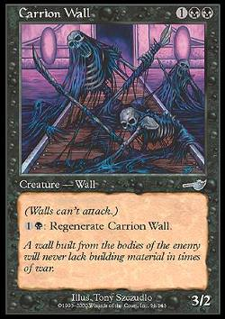 Carrion Wall (Aasmauer)