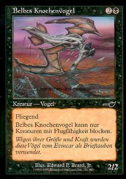 Belbes Knochenvogel (Belbe's Percher)