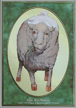 Token: Sheep